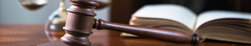 Formations en services sociaux, éducatifs et juridiques